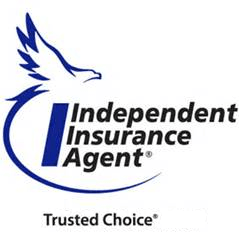 independent insurance agent blue logo at Newman Insurance